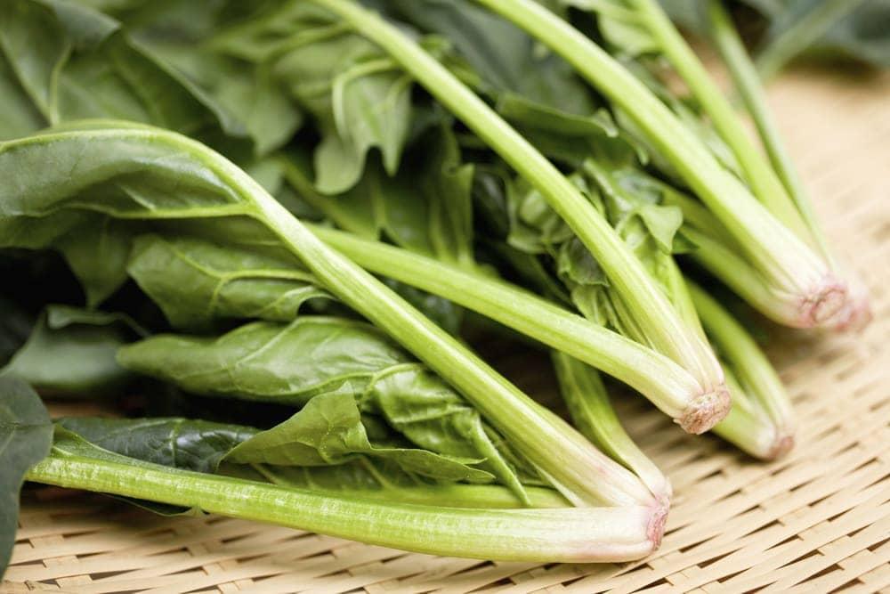 green-vegetable-folic-acid   American Pregnancy Association