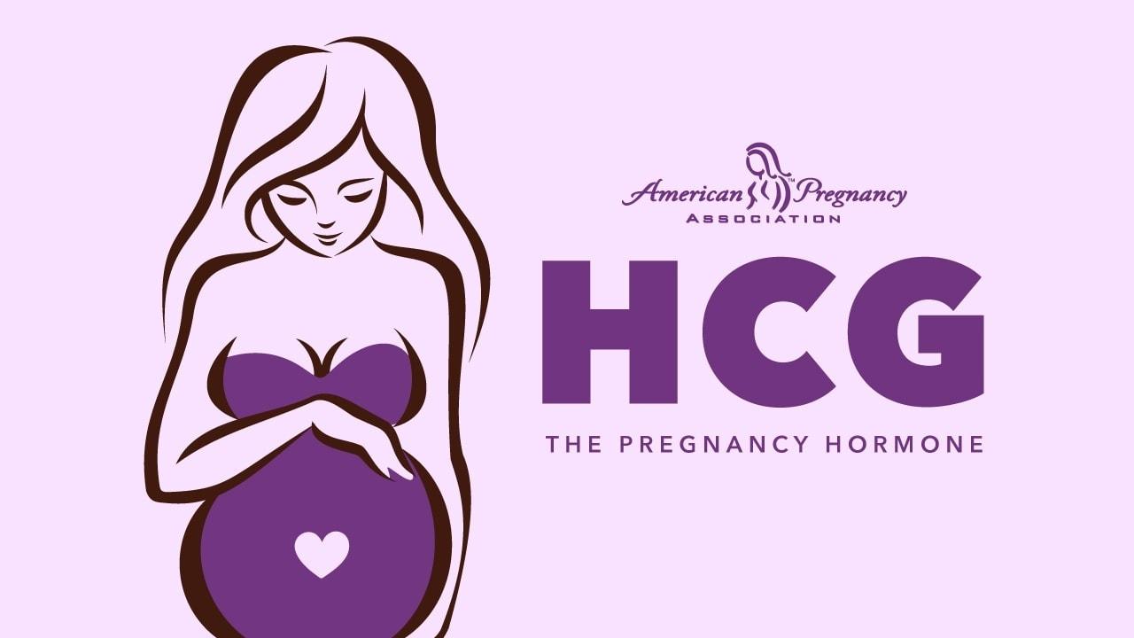 hcg hormones