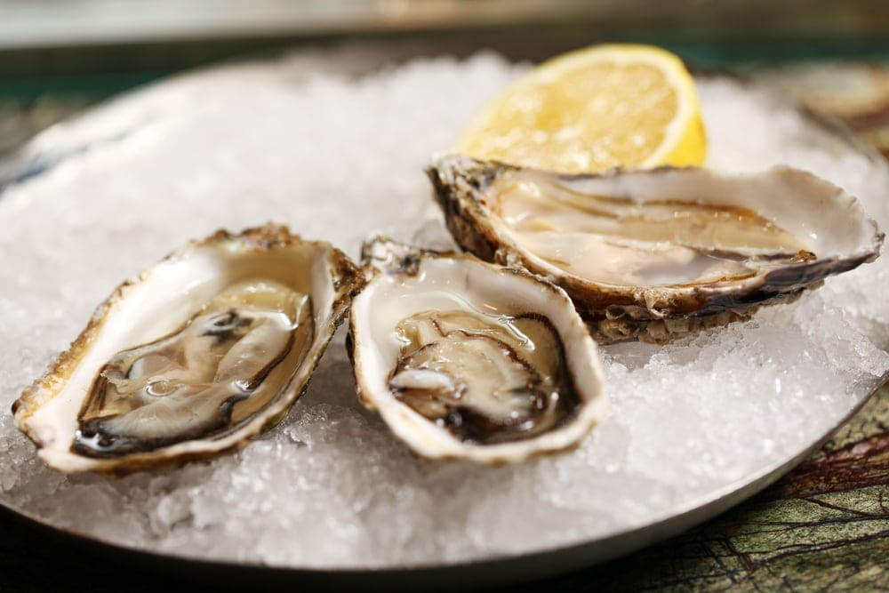 Raw shellfish should be avoided during pregnancy