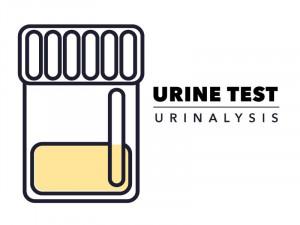 Urine-Tests | American Pregnancy Association