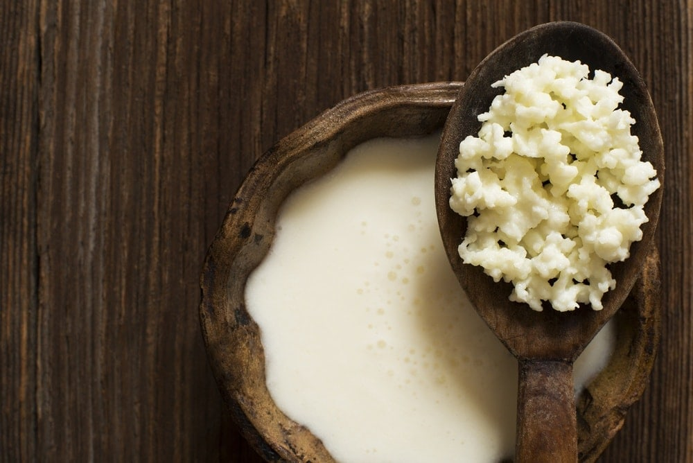 Image of Kefir, a fermented yogurt high in probiotics.