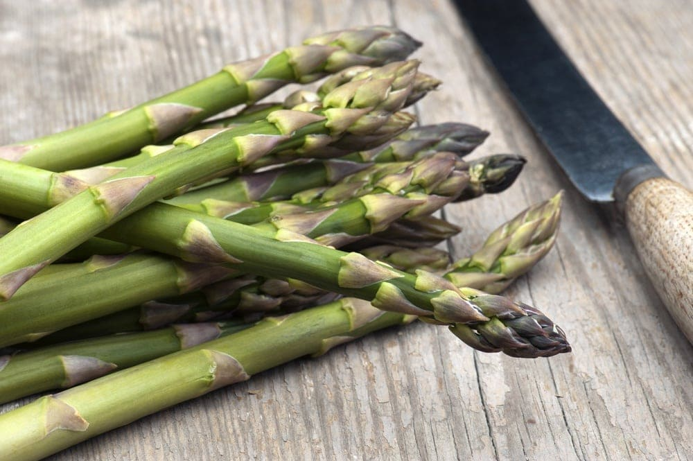 Asparagus that is high in folic acid