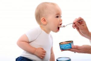 the right tuna for pregnancy| American Pregnancy Association