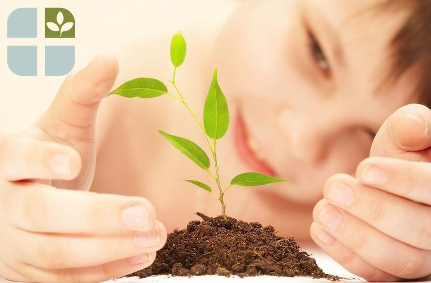Fairhaven-Health-child-plant | American Pregnancy Association