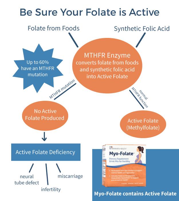 Active Folate vs Folic Acid